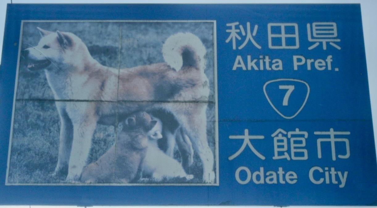 義徳ツボ看板:秋田
